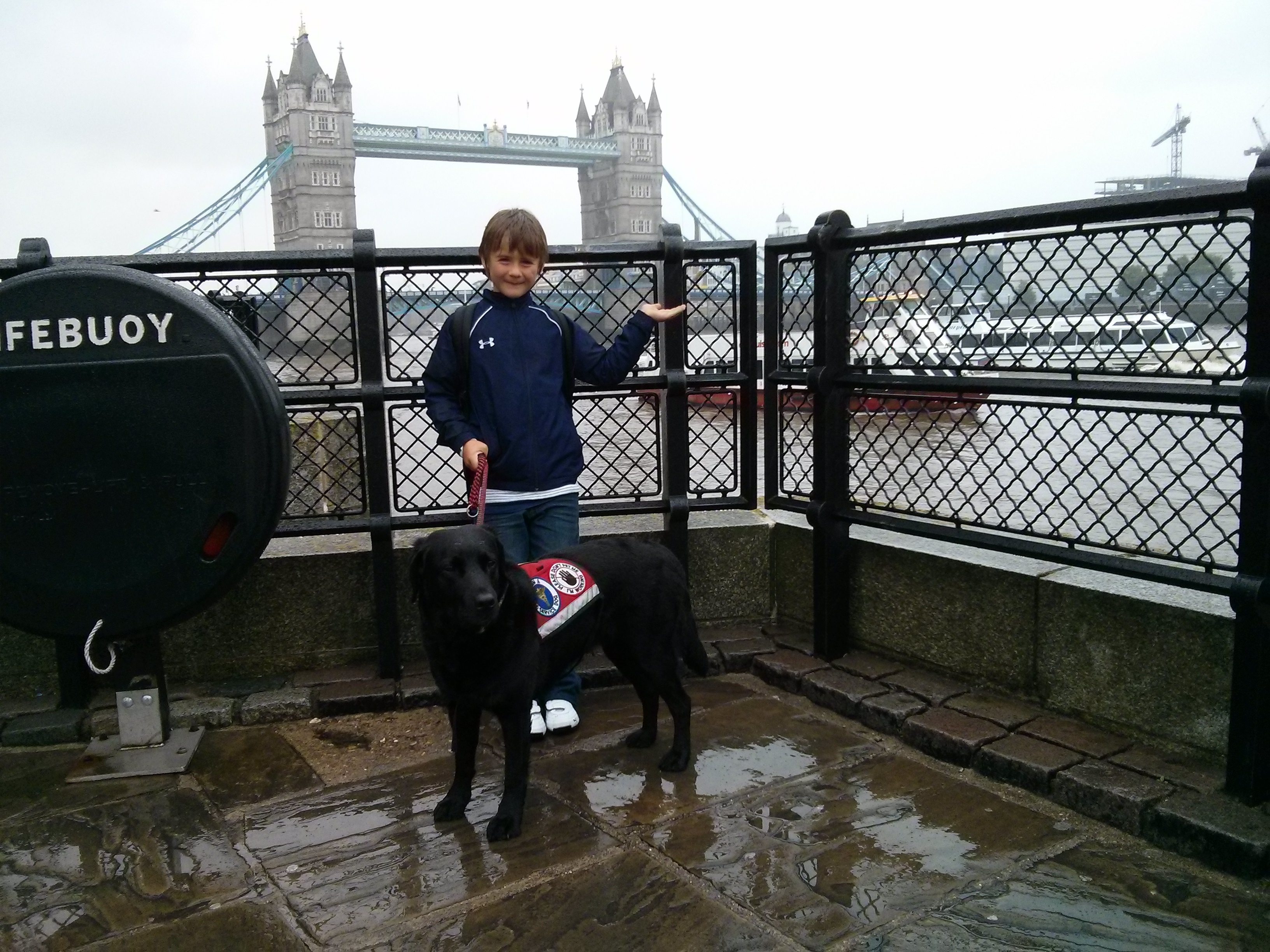 Travel With Our Service Dog