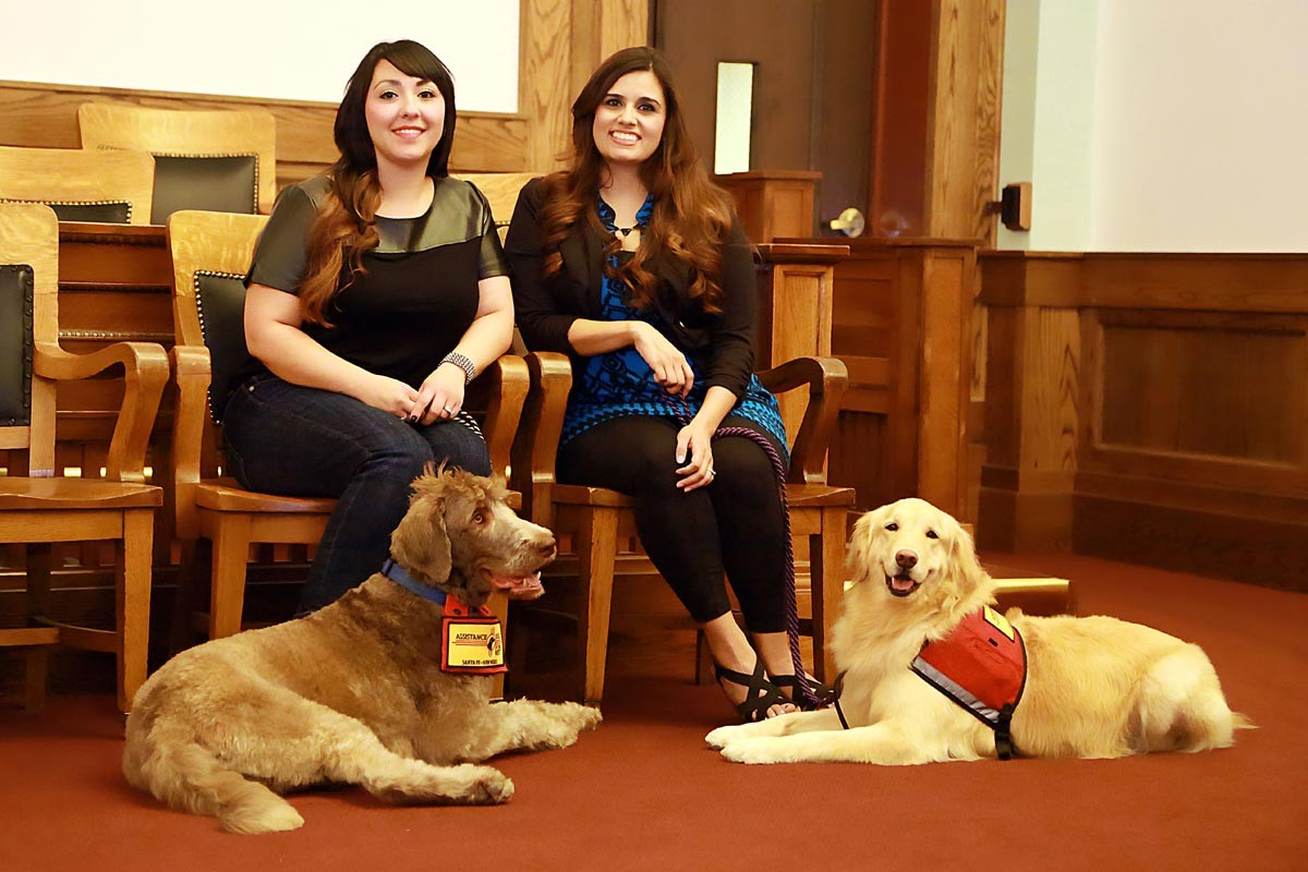 Moose (left) is now retired but Emma (right) is still the Courthouse Dog greeter at Fifth Judicial